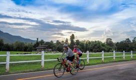 CHIANG MAI, TAILANDIA - 26 LUGLIO 2017: La gente che cicla sulla parte anteriore di un allevamento di pecore in Lan Nern Num, Chi Fotografie Stock