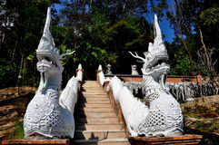 Chiang Mai, Tailandia: Scala del Naga a Wat Palad Immagini Stock Libere da Diritti