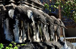 Chiang Mai, Tajlandia: Chedi słonie przy Watem Chiang Mun Obraz Stock