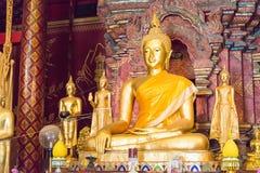 Chiang Mai, Tajlandia - Feb 17 2015: Budda statuy przy Watem Chiang Obraz Royalty Free