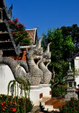 Chiang Mai, TH : Dragons jumeaux de Naga au temple Photo stock