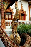 Chiang Mai, TH: Naga at Wat Lan Chang. An immense gilded Naga dragon with scaley tail stands in front of the Ubosot sanctuary hall at Wat Lan Chang in Chiang Mai Stock Image