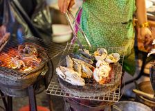 Woman cooks seafood Royalty Free Stock Images