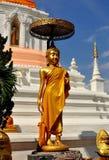 Chiang Mai, Thailand: Buddha Statue atWat Changkam Stock Photos