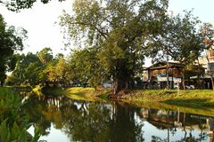 Chiang Mai, Thailand - December 2, 2017: View on a channel with big trees and low-rise houses. stock photo