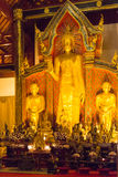 Chiang Mai, Thailand. - Feb 22 2015: Budda Statues at Wat Chang Royalty Free Stock Image