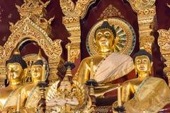 Chiang Mai, Thailand - 24 februari 2015: Buddastandbeelden in Wat Chang Stock Afbeelding