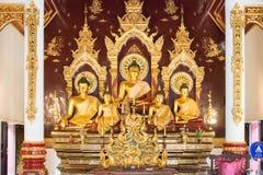 Chiang Mai, Thailand - 24 februari 2015: Buddastandbeelden in Wat Chang Royalty-vrije Stock Afbeelding