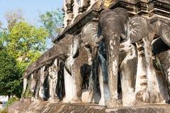 Chiang Mai, Thailand - 17 februari 2015: Olifantsstandbeelden in Wat Chi Stock Foto