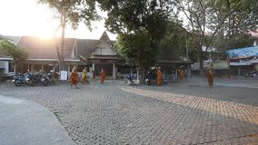 Chiang Mai,Thailand-February 14 ,2017:A group of young Buddhist monks cleans the territory of their monastery from. Fallen leaves. The life of Thai monks.The stock video