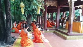 Young monks in Thailand. CHIANG MAI, THAILAND - July 31, 2017: young monks pray in the city of Chiang Mai, Thailand stock footage