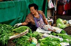 Chiang Mai Thailand: KvinnaSeling gräsplaner Arkivfoto