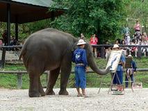 CHIANG MAI, THAILAND-_ AM 6. MAI 2017: Die Elefantmalereishow am Maesa-Elefantlager, Chiang Mai, Thailand Stockfotografie