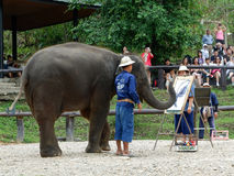 CHIANG MAI, THAILAND-_ AM 6. MAI 2017: Die Elefantmalereishow am Maesa-Elefantlager, Chiang Mai, Thailand Stockfoto
