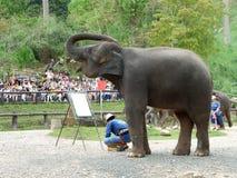 CHIANG MAI, THAILAND-_ AM 6. MAI 2017: Die Elefantmalereishow am Maesa-Elefantlager, Chiang Mai, Thailand Lizenzfreies Stockfoto