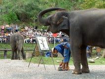 CHIANG MAI, THAILAND-_ AM 6. MAI 2017: Die Elefantmalereishow am Maesa-Elefantlager, Chiang Mai, Thailand Lizenzfreie Stockbilder