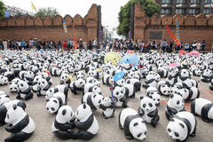 CHIANG MAI,THAILAND March 19, 2016 : Pandas World Tour by WWF ex Royalty Free Stock Photo