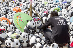 CHIANG MAI,THAILAND March 19, 2016 : Pandas World Tour by WWF. Exhibition of the 1,600 paper mache pandas during a flash mob  world tour made by French artist Royalty Free Stock Image