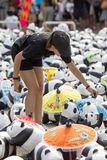 CHIANG MAI,THAILAND March 19, 2016 : Pandas World Tour by WWF. Exhibition of the 1,600 paper mache pandas during a flash mob  world tour made by French artist Stock Image