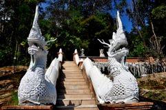 Chiang Mai, Thailand: Naga-Treppenhaus bei Wat Palad lizenzfreie stockbilder