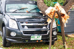 CHIANG MAI, THAILAND - NOVEMBER 25 : Fallen tree on a car after Royalty Free Stock Photography