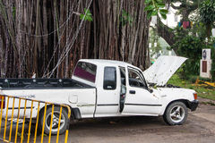 CHIANG MAI, THAILAND - NOVEMBER 25 : Fallen tree on a car after Stock Photos