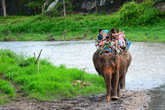CHIANG MAI, THAILAND - November 13, 2015: Olifanten en mahouts, terwijl het begeleiden van toeristen om olifanten langs de rivier Stock Foto