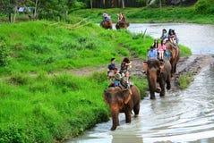 CHIANG MAI, THAILAND - November 13, 2015: Olifanten en mahouts, terwijl het begeleiden van toeristen om olifanten langs de rivier Royalty-vrije Stock Foto's