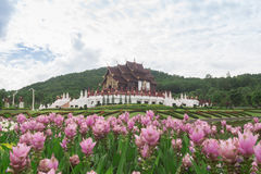 Chiang Mai, Thailand at Royal Flora Ratchaphruek Park. Stock Photo