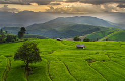 CHIANG MAI , THAILAND Stock Images