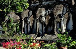 Chiang Mai, Thailand: Wat Chiang Mun Royalty-vrije Stock Fotografie