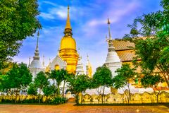 Chiang Mai, Thailand: Wat Suan Dok Chedis, Boeddhistische tempel, Wat i Stock Afbeelding