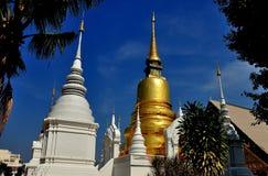 Chiang Mai, Thailand: Wat Suan Dok Chedis Stock Image