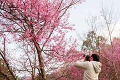 Chiang Mai turister för det Thailand datumet 14-Jan-18 tar foto W arkivfoton
