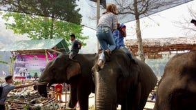 Chiang Rae, Tailândia - 2019-03-13 - festival da festa do elefante - a menina nas listras escala na cabeça do elefante vídeos de arquivo