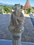 Chiang Rai Goat stenar royaltyfri foto