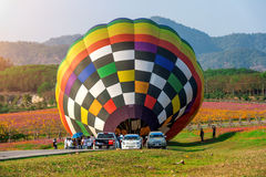CHIANG RAI, TAILANDIA - 16 FEBBRAIO: Pallone variopinto a SINGHA Fotografie Stock