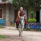 CHIANG RAI, THAILAND - 21. Mai 2016: Jung Lizenzfreies Stockfoto
