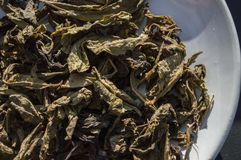 Tea . Best Coffee & Tea at Singh Park Chian Rai, Thailand. Chiang Rai, Thailand - September 24,2017: Best Coffee&Tea at Singh Park. There are coffee and tea Royalty Free Stock Photography