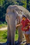 CHIANG RAJA TAJLANDIA, LUTY, - 01, 2018: Niezidentyfikowana kobieta jest ubranym okulary przeciwsłonecznych i pampering ogromnego Obraz Royalty Free