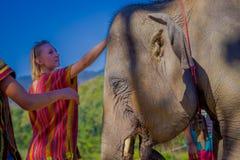 CHIANG RAJA TAJLANDIA, LUTY, - 01, 2018: Zamyka up niezidentyfikowana kobieta dotyka dżungli sanktuarium przy Chiang Mai Obrazy Royalty Free
