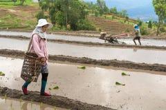 CHIANGMAI, ΤΑΪΛΑΝΔΗ 13 ΙΟΥΛΊΟΥ: Αγρότης γυναικών που περπατά στο χώμα κορυφογραμμών Στοκ εικόνες με δικαίωμα ελεύθερης χρήσης