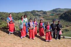 CHIANGMAI ТАИЛАНД - JAN10: harvesti людей племени холма dara-ang Стоковое Изображение
