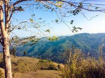 Chiangmai Royaltyfri Bild