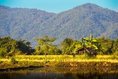 Chiangmai Стоковые Фотографии RF