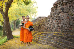 Chiangmai City Wall,Thailand Stock Images