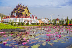 Chiangmai royal pavilion. With lotus flower royalty free stock images