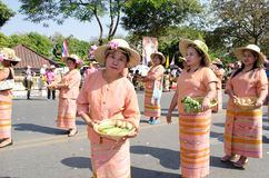 Chiangmai, Thai villagers  in Flower Festival. Stock Photography