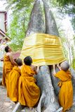 CHIANGMAI, THAILAND - APRIL 15: The little monks residents are r Stock Photo