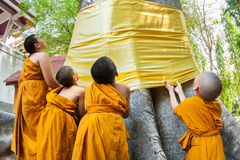 CHIANGMAI, THAILAND - APRIL 15: The little monks residents are r Royalty Free Stock Photos